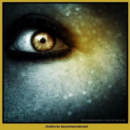 eyes4WP@@@